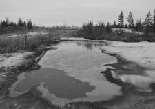 Ответственность за ямальскую экологию свалили на нефтяников