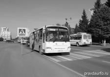 Транспортную схему Кургана перекраивают под лояльных перевозчиков