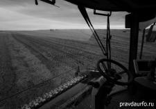 Сельхозземли Курганской области