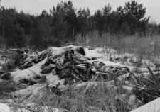 Мэрия Екатеринбурга установила саботажников мусорной реформы. Нелегальным свалкам нашли хозяев