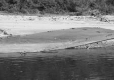 очистка береговой линии Оби