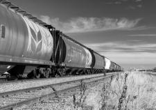 Минсельхоз РФ режет экспорт Курганской области. Договариваться с РЖД аграрии отказываются