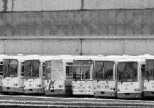 Городской транспорт Челябинска реанимируют за счет концессии и крупного производства