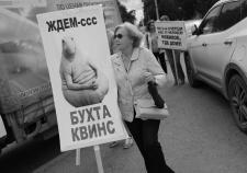Пайщики «Бухты Квинс» требуют нового уголовного дела для Александра Новикова