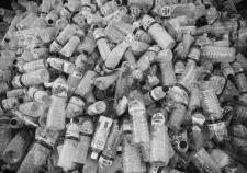 Кадровая политика Шумкова ударила по переработке сырья в Курганской области