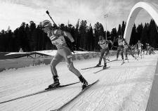 Деньги на развитие спорта в городе «ЛУКОЙЛа» всплыли на курортах Краснодарского края