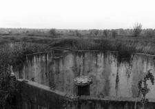 Курганские чиновники толкнули Петухово к санитарному бедствию