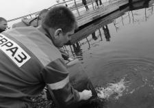 «Евраз» назвал условия улучшения экологии в Свердловской области