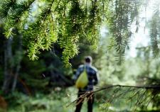 Полицейские Шали нашли пропавших в лесу 3 детей и юношу