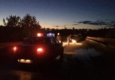 В Свердловской области при падении автомобиля с моста погибло 5 человек