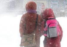 Тюменские школьники с 1 по 9 класс остались дома из-за холодов