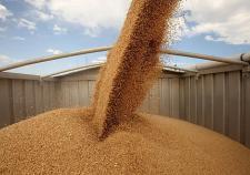 В Тюмени пьяный рабочий утонул в бункере с зерном