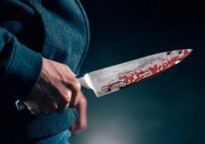 В Нижнем Тагиле мужчина изрезал ножом 4-летнюю девочку и ее мать