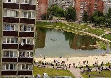 СКР проверит обстоятельства гибели подростка в пруду Челябинска