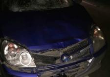 Под Екатеринбургом автоледи насмерть сбила мужчину